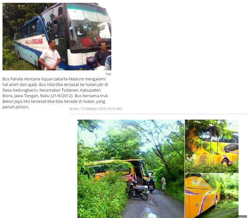 misteri-tersesat-kendaraan-di-hutan-jati-blora-jawa-tengah